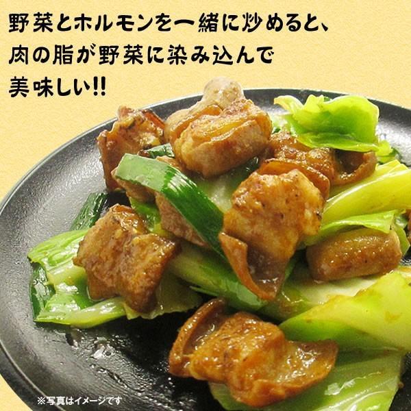 ホルモン 焼肉 牛ホルモン 味噌だれ漬け 200g 情熱ホルモン yhjonetsu 06