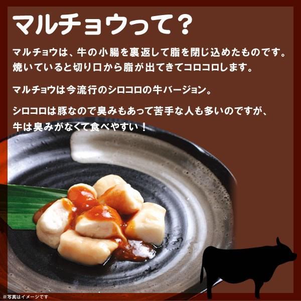 焼肉 肉。味噌だれ漬けマルチョウ(200g)情熱ホルモン yhjonetsu 03