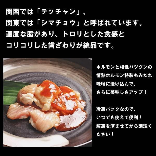 焼肉 肉 テッチャン 味噌だれ漬け200g 情熱ホルモン シマチョウ|yhjonetsu|03