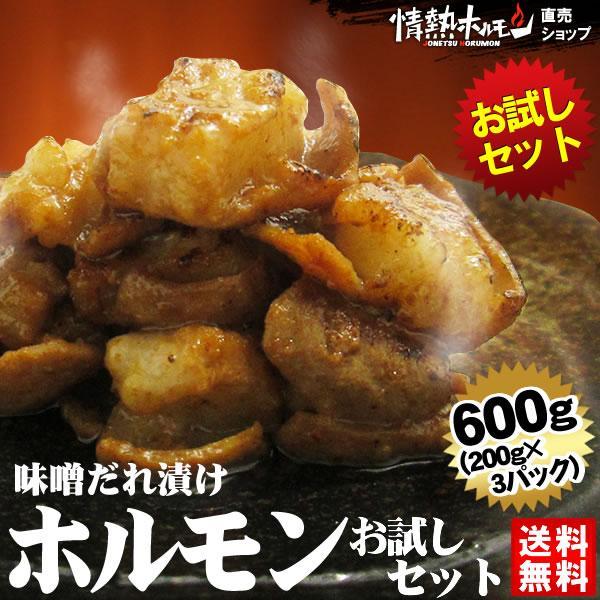 ホルモン 焼肉 牛ホルモン味噌だれ漬けお試しセット 600g 送料無料 バーベキュー 焼肉セット BBQ|yhjonetsu
