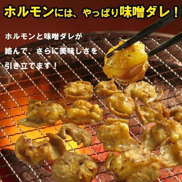 ホルモン 焼肉 牛ホルモン味噌だれ漬けお試しセット 600g 送料無料 バーベキュー 焼肉セット BBQ|yhjonetsu|04