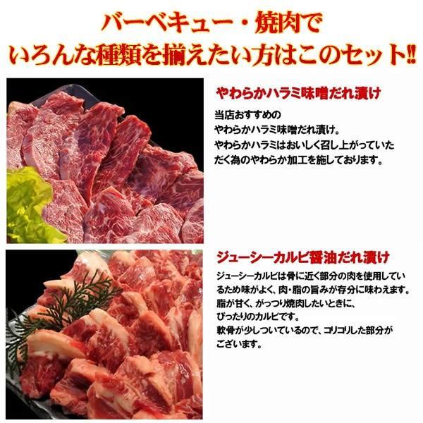 バーベキューセット 焼肉セット 特撰バラエティBBQセット 計1.92kg 約4-5人前 送料無料 BBQ 焼肉|yhjonetsu|03