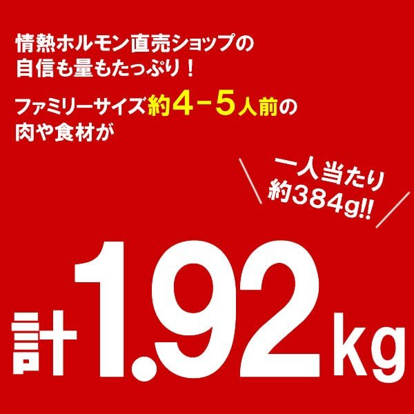 バーベキューセット 焼肉セット 特撰バラエティBBQセット 計1.92kg 約4-5人前 送料無料 BBQ 焼肉|yhjonetsu|08