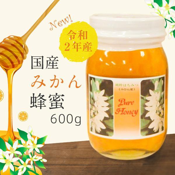 はちみつ 国産 みかん 蜜柑蜜 令和2年・和歌山産 みかん蜂蜜 600g×2本