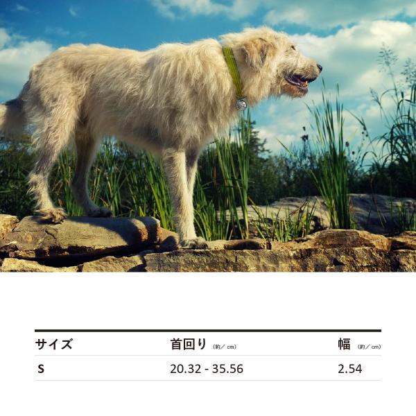 earthdog(アースドッグ) decorative hemp martingale collars Sサイズ 小型犬用 中型犬用|ykozakka|02