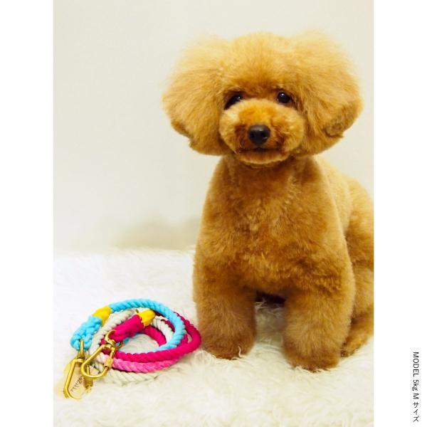 ファウンドマイアニマル ロープ リード FOUND MY ANIMAL アジャスタブル リーシュ オンブレ グラデーション 犬 猫 おしゃれ セレブ インポート 輸入 送料無料|ykozakka|10