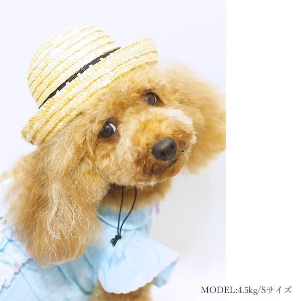 犬 帽子 麦わら カンカン帽 Sサイズ 撮影 紫外線対策 熱中症予防 2017SS ランキング入賞 ykozakka 04