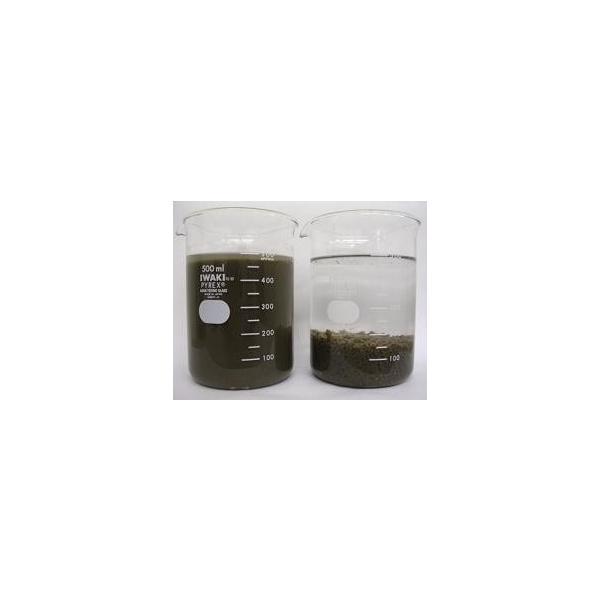 排水処理用凝集剤:水スマイル 水澄まいる(標準型) 100g ymi-net 02