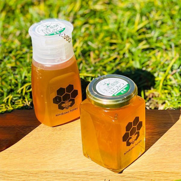 MINOKAMO HONEY 百花蜜  2個セット 生はちみつ チューブ式プラ容器詰め300g+瓶250g 100% 純粋 美濃加茂ハニー