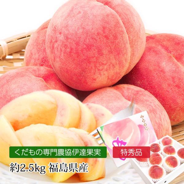 桃 福島 献上桃の郷 桑折町産 伊達果実もも 特秀品 約2.5kg 7〜9玉|yogmogg