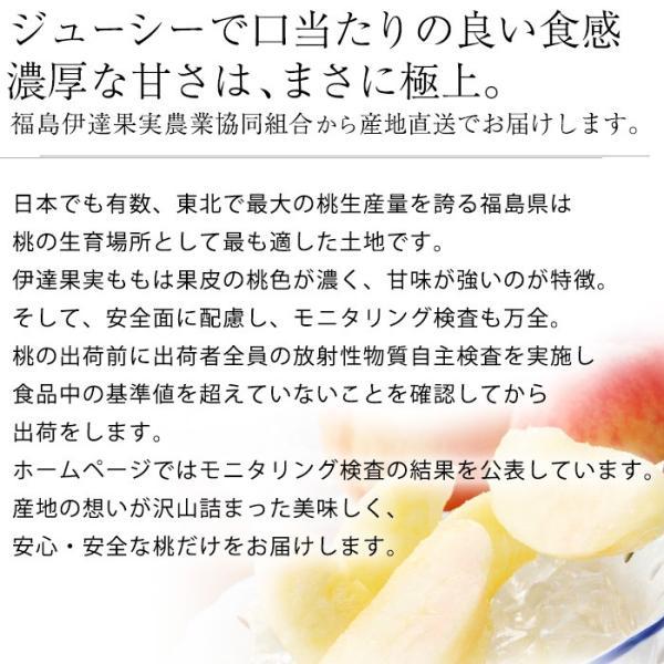 桃 福島 献上桃の郷 桑折町産 伊達果実もも 特秀品 約2.5kg 7〜9玉|yogmogg|02