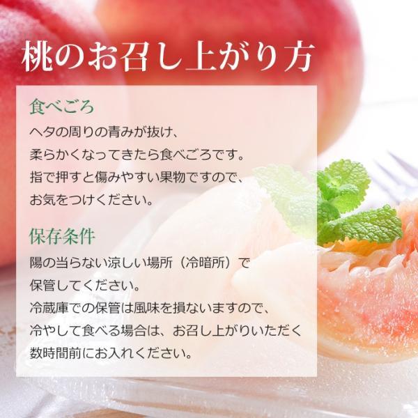 桃 福島 献上桃の郷 桑折町産 伊達果実もも 特秀品 約2.5kg 7〜9玉|yogmogg|12