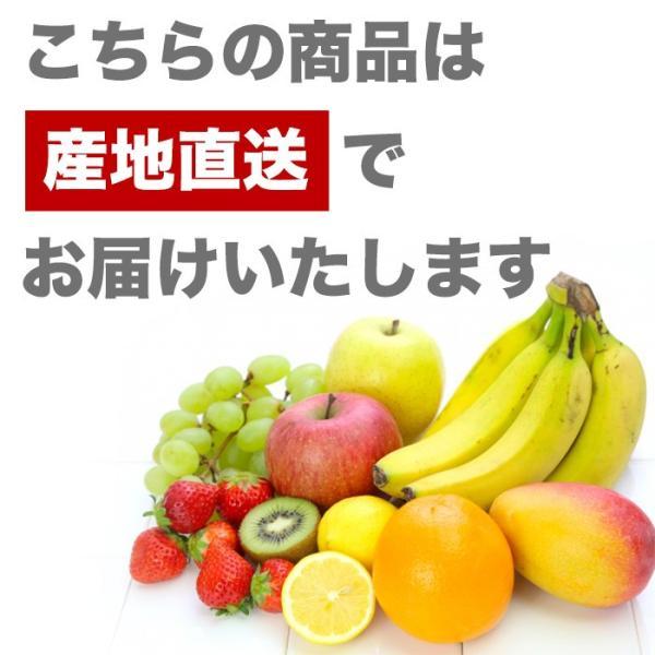 桃 福島 献上桃の郷 桑折町産 伊達果実もも 特秀品 約2.5kg 7〜9玉|yogmogg|13