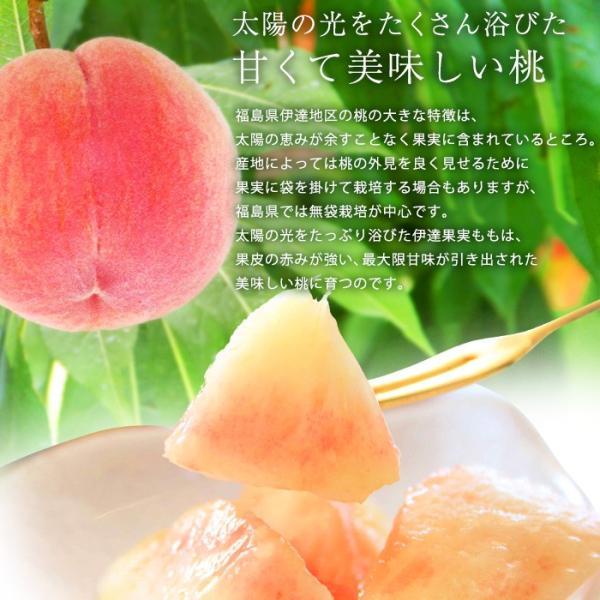 桃 福島 献上桃の郷 桑折町産 伊達果実もも 特秀品 約2.5kg 7〜9玉|yogmogg|05