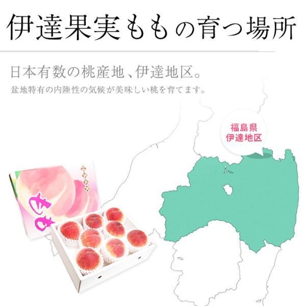 桃 福島 献上桃の郷 桑折町産 伊達果実もも 特秀品 約2.5kg 7〜9玉|yogmogg|06