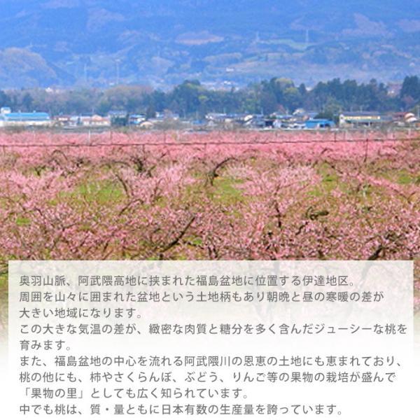 桃 福島 献上桃の郷 桑折町産 伊達果実もも 特秀品 約2.5kg 7〜9玉|yogmogg|07