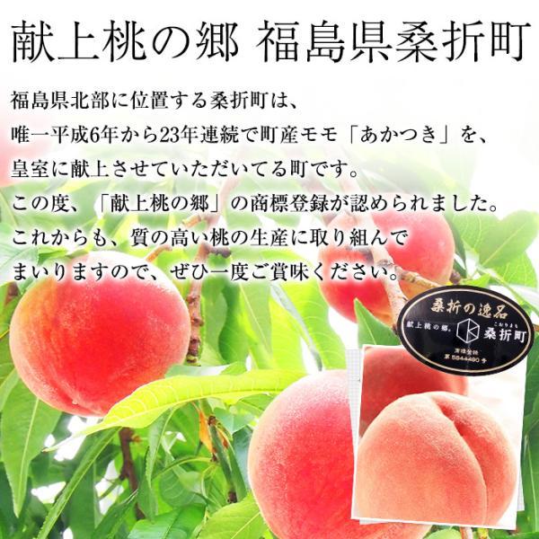 桃 福島 献上桃の郷 桑折町産 伊達果実もも 特秀品 約2.5kg 7〜9玉|yogmogg|08