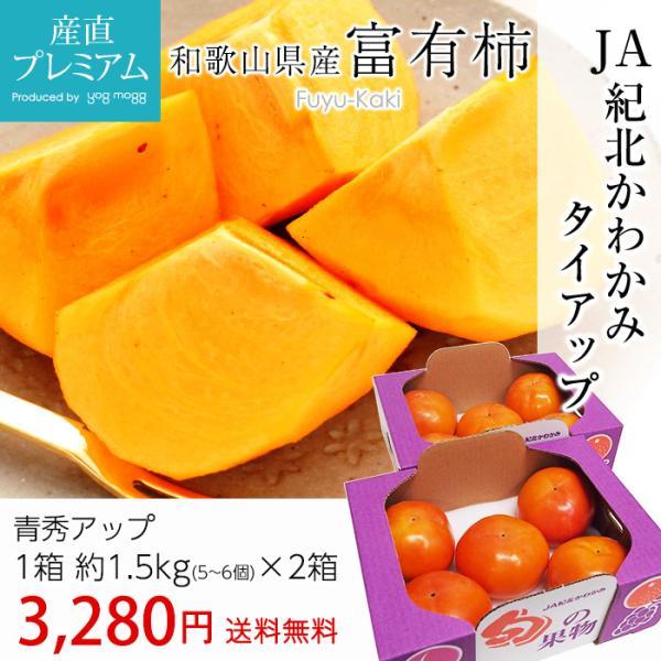 訳ありではありません! 柿 富有柿 青秀アップ 約3kg(約1.5kg(5〜6玉)×2箱) 和歌山