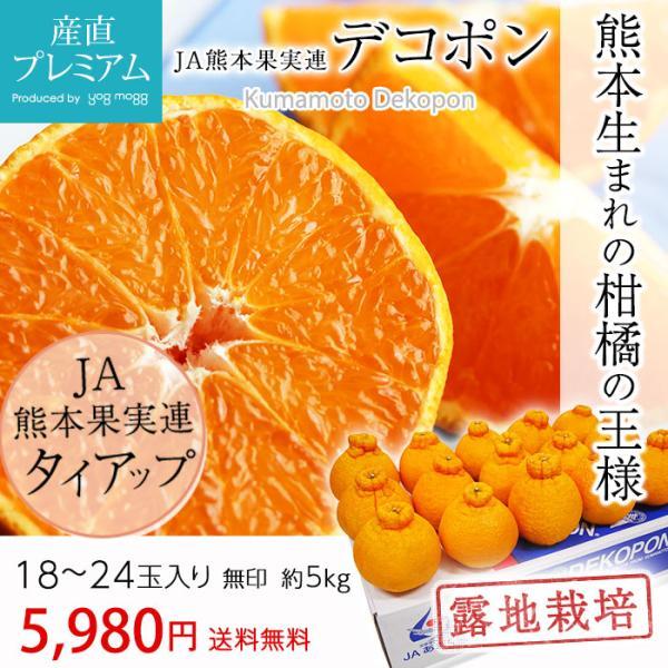 デコポン 無印 露地栽培 5kg 18〜20玉 JA熊本 熊本 みかん 箱買い|yogmogg