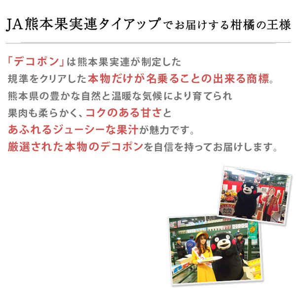 デコポン 無印 露地栽培 5kg 18〜20玉 JA熊本 熊本 みかん 箱買い|yogmogg|02