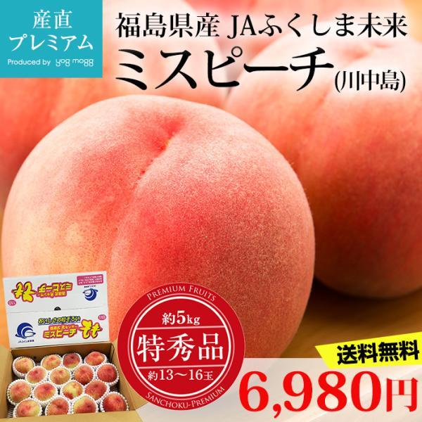 桃 ミスピーチ 川中島 特秀品 約5kg 13〜16玉 福島県産