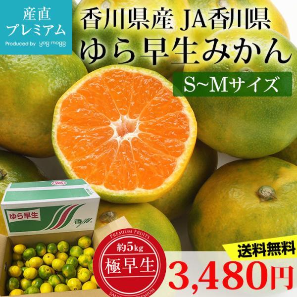 みかん ゆら早生みかん 約5kg S〜Mサイズ 極早生みかん 香川県産