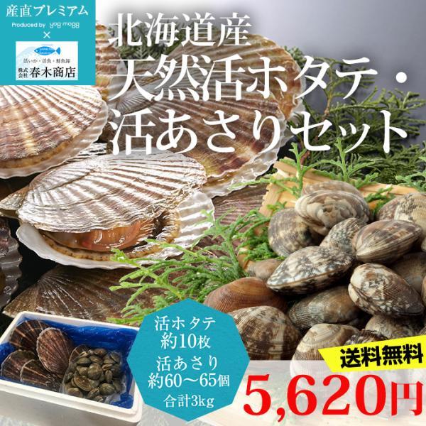 貝類 活ホタテ 約10枚・活あさり 約60〜65個 合計3kgセット 北海道産
