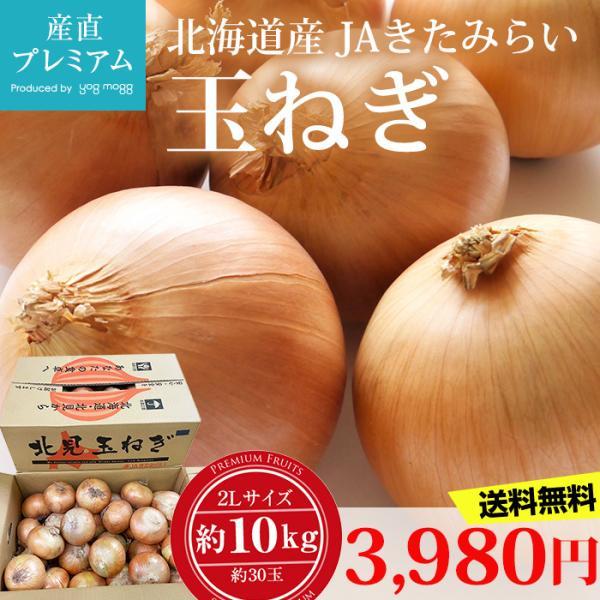 玉ねぎ 約10kg 2Lサイズ 約30玉 北海道産
