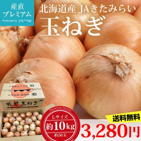 玉ねぎ 約10kg Lサイズ 約50玉 北海道産