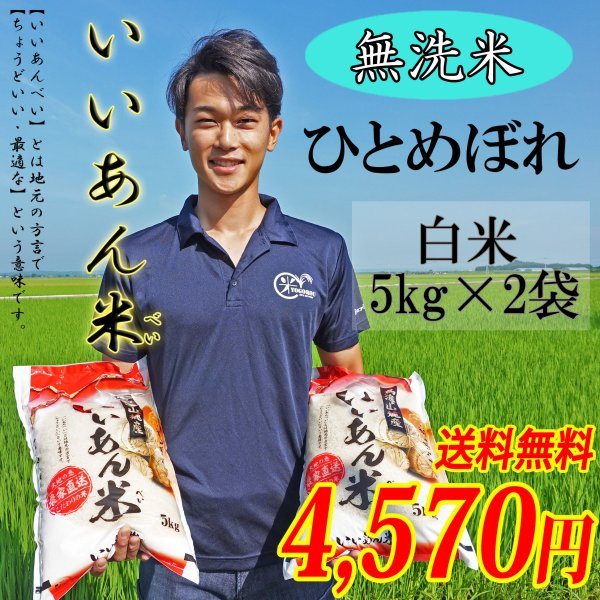 お米 無洗米 ひとめぼれ 白米 5kg×2袋 令和2年産