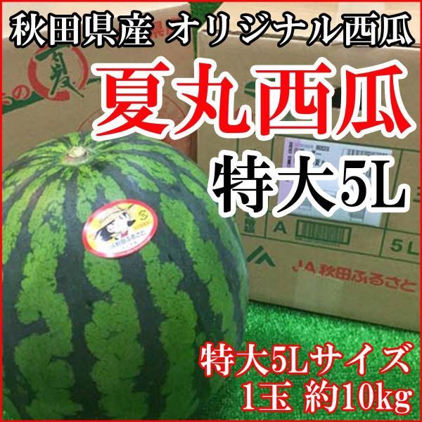 スイカ 秋田県産 夏丸すいか 特大玉西瓜 5L1玉約10kg 送料無料 訳あり品ではございません