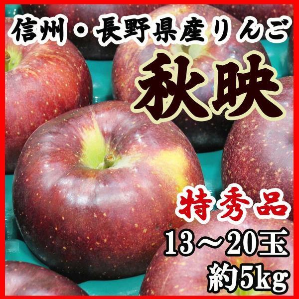 りんご 信州・長野産 秋映 特秀品 送料無料 13〜20玉5kg 訳あり品ではございません