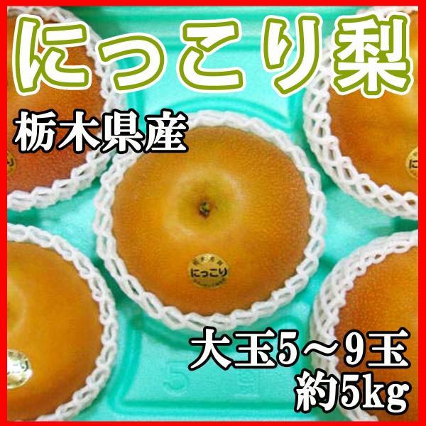 梨 にっこり 栃木県産 大玉5〜...