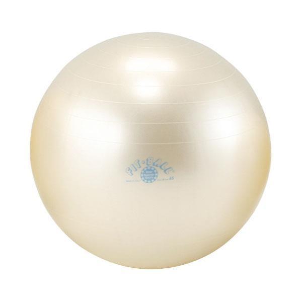 バランスボール ダンノ DANNO ギムニクフィットボール(d5921)|yokohamariverup