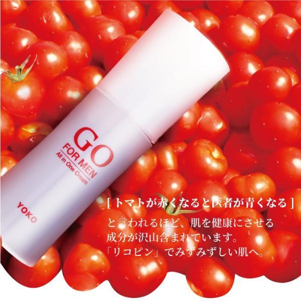 男性用化粧品 GO FOR MEN 80mL オールインワン 化粧水 スキンケア エイジングケア アフターシェービング  ギフト レッド 送料無料|yokojapan|16