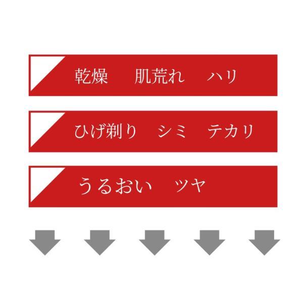 男性用化粧品 GO FOR MEN 80mL オールインワン 化粧水 スキンケア エイジングケア アフターシェービング  ギフト レッド 送料無料|yokojapan|05