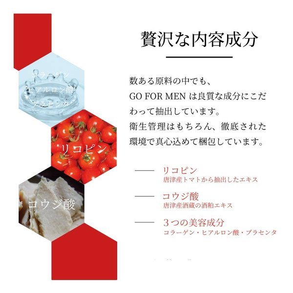 男性化粧品 スキンケア GO FOR MEN 30mL オールインワン メンズコスメ 化粧水 美容液 エイジングケア アフターシェービング 肌荒れ防止 送料無料 ポイント消化|yokojapan|08