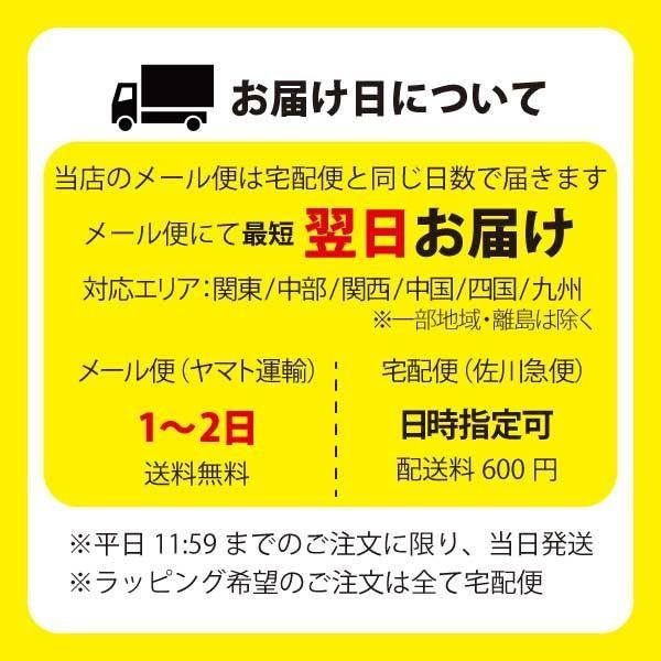 ベビー 水着 女の子 チューブトップ 水遊びパンツ ベビースイミング 日本製 ビキニ|yokoronstore|03