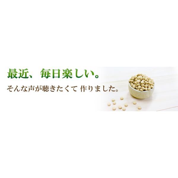 発酵食品サプリメント【発酵 玄米菜食・粒】|yonekichi|03