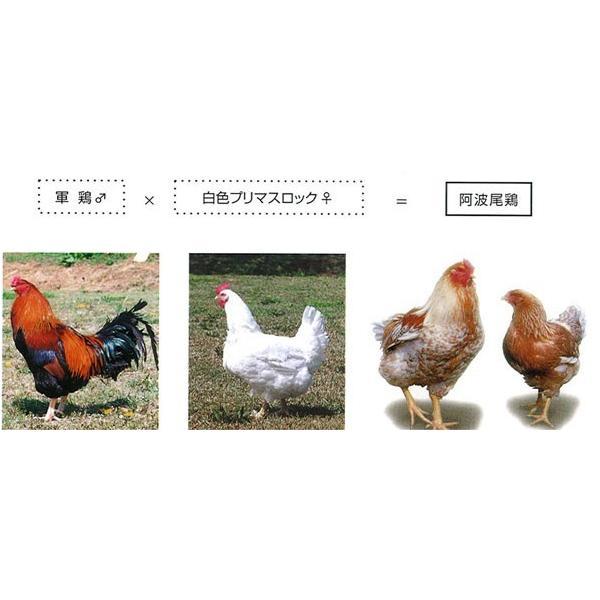 <蔵出しセール>阿波尾鶏のローストチキン 1本 骨付きもも ローストレッグ 鶏肉 地鶏 バレンタインデー ディナー お取り寄せグルメ 人気 2020 ご飯のお供 お肉|yonekyu|04