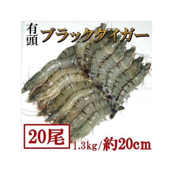約20cm・特大有頭ブラックタイガー1.3kg(20尾) 海老 えび エビ 業務用