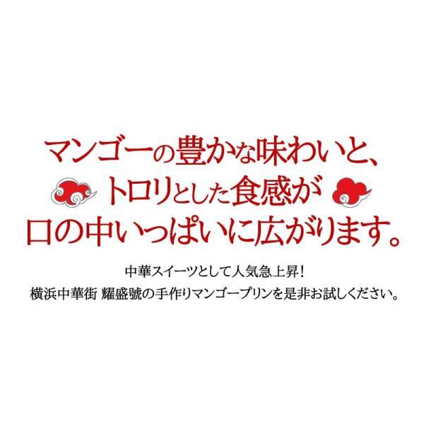 マンゴープリン(100g)(冷凍商品)耀盛號(ようせいごう)|yoseigo|02