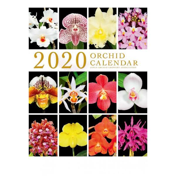 オリジナル洋蘭カレンダー(大)|yottekero