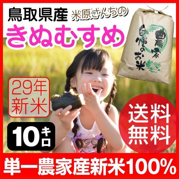 (ポイント15倍) 鳥取県 倉吉市大原産 きぬむすめ 特A 10kg 新米(送料無料・農家直送)【後払い不可】 yct/c|youplus-corp2