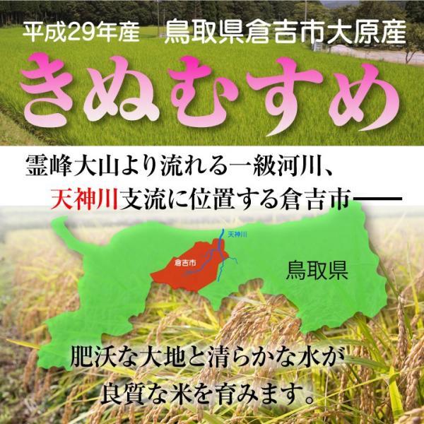 (ポイント15倍) 鳥取県 倉吉市大原産 きぬむすめ 特A 10kg 新米(送料無料・農家直送)【後払い不可】 yct/c|youplus-corp2|02