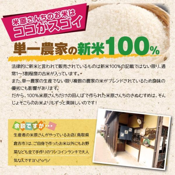 (ポイント15倍) 鳥取県 倉吉市大原産 きぬむすめ 特A 10kg 新米(送料無料・農家直送)【後払い不可】 yct/c|youplus-corp2|04