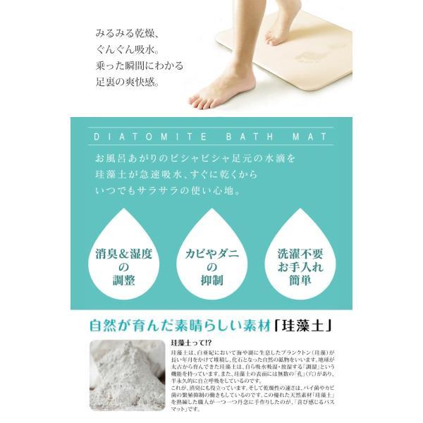 ※B品※訳アリ※【送料無料】 Lサイズ 珪藻土バスマット 速乾足拭きマット 約60×40cm (kog) (bath-keisoudo-wake)|your-shop|02