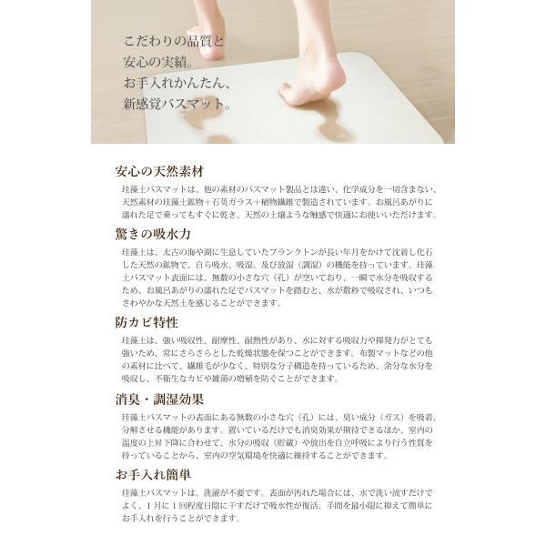 ※B品※訳アリ※【送料無料】 Lサイズ 珪藻土バスマット 速乾足拭きマット 約60×40cm (kog) (bath-keisoudo-wake)|your-shop|03