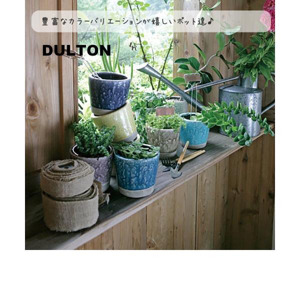 DULTON ダルトン カラーグレーズポット 植木鉢 鉢 フラワーポット 多肉植物 サボテン 花 植物 プラント 艶 ツヤ インテリア レトロ おしゃれ ひび割れ模様|ys-prism|02