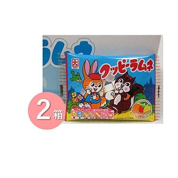 カクダイ製菓 クッピーラムネ 10g×30個入×2箱セット